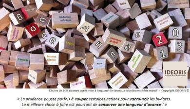 En 2013, gardez une longueur de bois d'avance grâce aux conseils d'IDEOBIS !